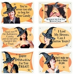 Spicy Witch Metal Signs Set of 6
