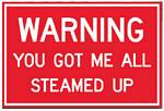 Warning You Got Me All Steamed Up Metal Sign