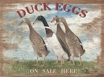 Duck Eggs On Sale Vintage Metal Sign