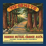 YO-SEMI-TE Wooded Outdoor Vintage Tin Sign