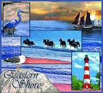 Eastern Shore Maryland Tapestry