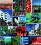 Florida Tapestry