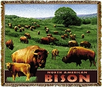 Bison North American Tapestry