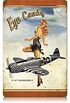 P-47 Eye Candy Vintage Metal Sign