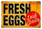 Eggs Laid Daily Vintage Metal Sign