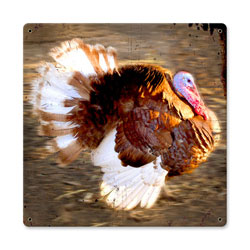Running Turkey Vintage Metal Sign