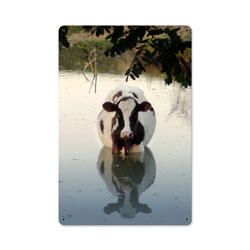 Cow in Water Vintage Metal Sign