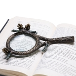 Pinecone Magnifier