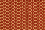 Quick Ship! 1 Yard of Fabric  - Persimmon Fabric