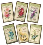 Assorted Floral Metal Signs Set of 6