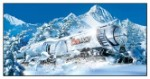 Coors Light Silver Bullet Tin Sign