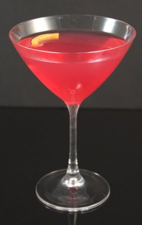 Fake Food Acrylic Cosmopolitan Martini