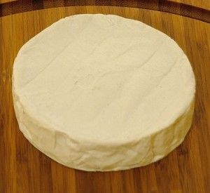Fake Food Brie Cheese
