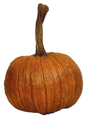 Fake Food Large Natural Pumpkin with Tall Stem