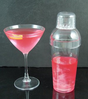 Fake Food Acrylic Cosmopolitan Martini Set