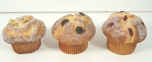 Fake Food set of 3 Muffins