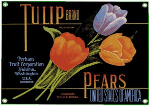 Tulip Pears Metal Sign