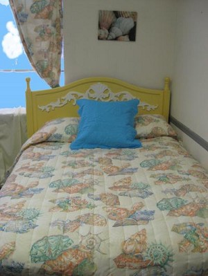 Peach Shell Tropical Bedding and Beach Bedding