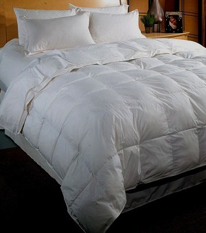 Goose Down Full/Queen 500 Thread Count 100% Egyptian Cotton Comforter