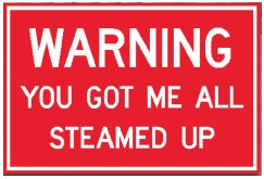 "Warning You Got Me All Steamed Up 10"" x 14"" Metal Sign"