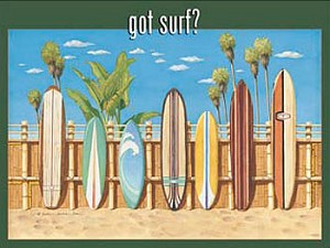 Got Surf? Metal Sign