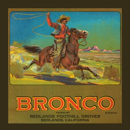 Bronco Brand Vintage Tin Sign