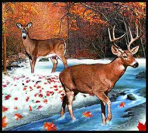 Lodge White Tailed Deer Tapestry