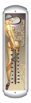 Warmed Up Metal Thermometer